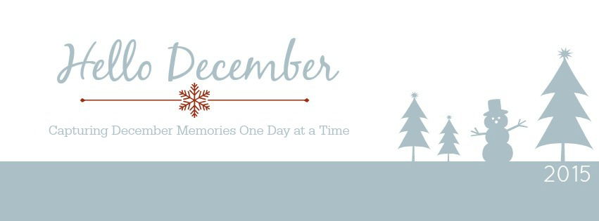 Hello December, Project Life