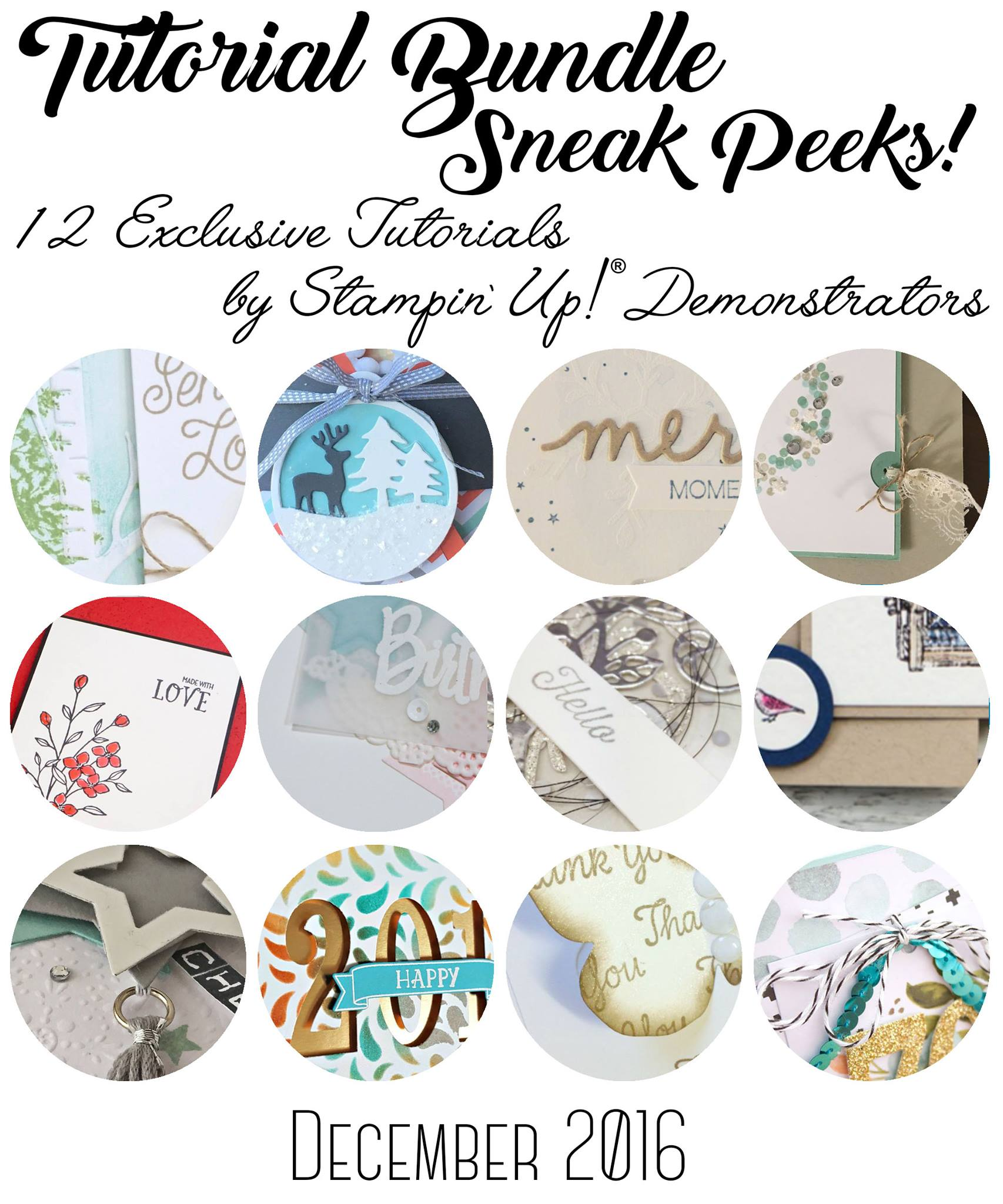 December Exclusive Tutorial, Stampin' Up!