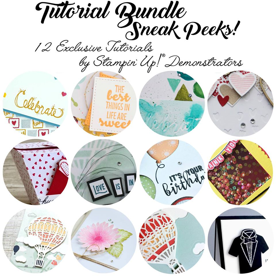 January Tutorial, Spectacular Birthday Cake Crazy, Stampin' Up!